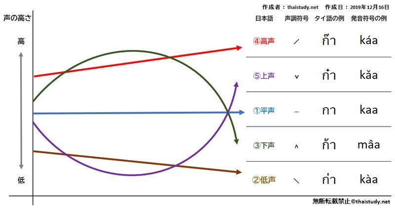 中子音字の基本的な成長の図